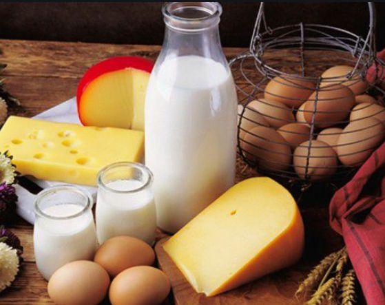 الاحتياجات الغذائية من الكالسيوم للشخص البالغ