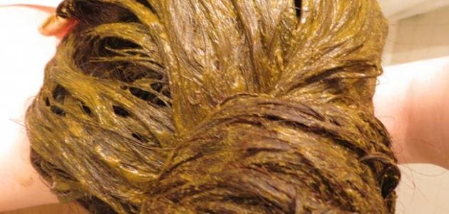 طريقة عجن واستعمال الحناء لصبغ الشعر