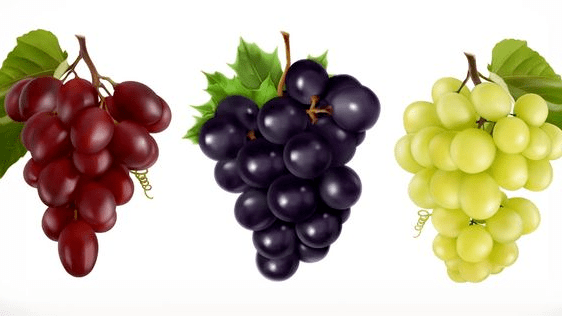 العنب والرجيم