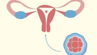 هل يحدث حمل بعد الغسل من الدورة بيوم
